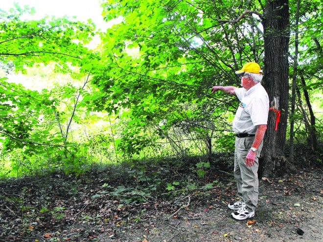 Historic rest area proposed on nature trail near Darien