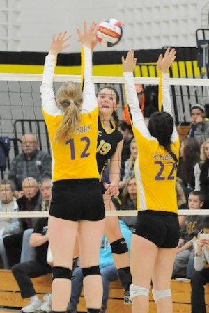 Volleyball team advances to sectionals