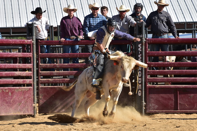 Riding, roping and wrangling