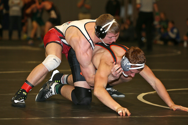 Whippets make 'A Pool' at Watertown